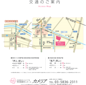 map_to_camellia